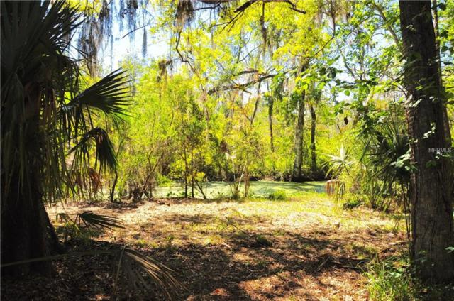 Belle Oak Dr Lot 22, Leesburg, FL 34748 (MLS #O5760411) :: The Duncan Duo Team