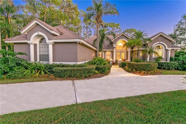 8538 Redleaf Lane, Orlando, FL 32819 (MLS #O5760439) :: The Light Team