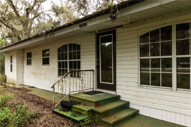 18940 Ravenswood Road, Altoona, FL 32702 (MLS #O5760861) :: The Duncan Duo Team