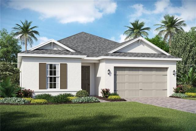 2244 Antilles Club Drive, Kissimmee, FL 34747 (MLS #O5761559) :: RE/MAX Realtec Group