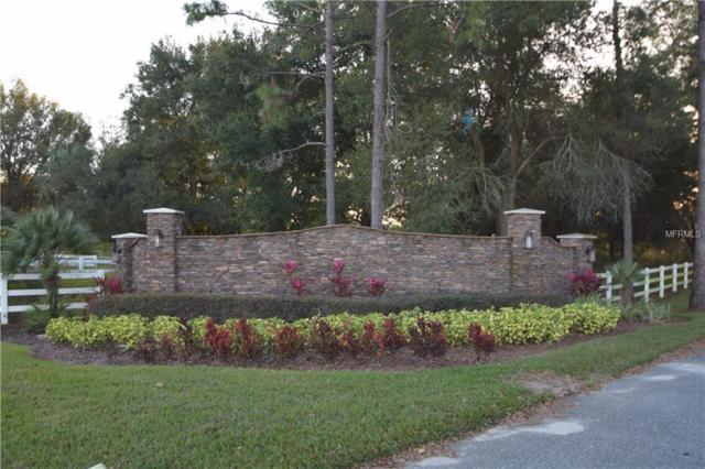 Lot 13 Clear Water Way, Groveland, FL 34736 (MLS #O5762023) :: The Duncan Duo Team