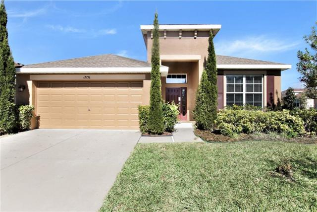 12736 Whitney Meadow Way, Riverview, FL 33578 (MLS #O5762170) :: Cartwright Realty
