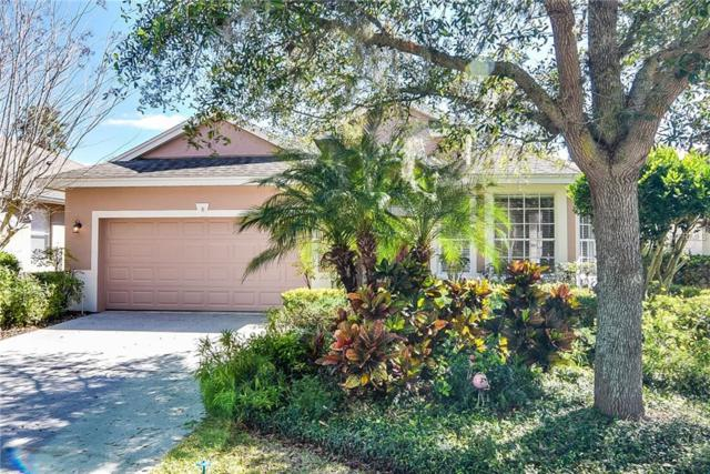 10037 Silk Grass Drive, Orlando, FL 32827 (MLS #O5762281) :: Homepride Realty Services