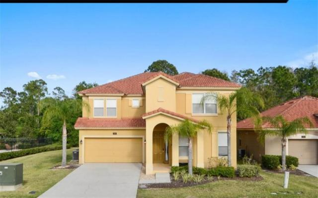 1191 Marcello Boulevard, Kissimmee, FL 34746 (MLS #O5762413) :: The Duncan Duo Team