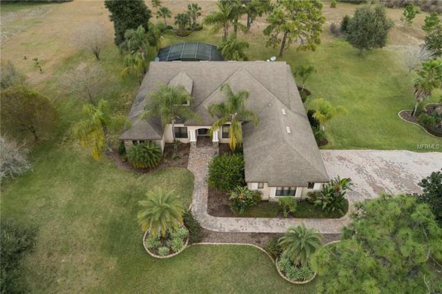 27226 Grand Oak Lane, Tavares, FL 32778 (MLS #O5762516) :: Team Suzy Kolaz