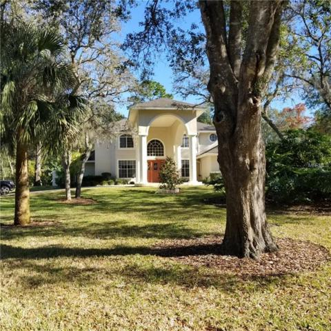 390 Eagle Creek Circle, Lake Mary, FL 32746 (MLS #O5762690) :: RE/MAX Realtec Group