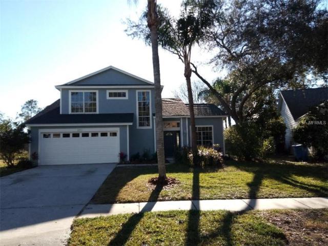 17711 Esprit Drive, Tampa, FL 33647 (MLS #O5762762) :: Team Bohannon Keller Williams, Tampa Properties