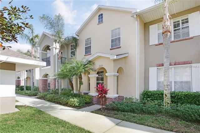 12620 Weston Drive, Tampa, FL 33626 (MLS #O5762785) :: Griffin Group