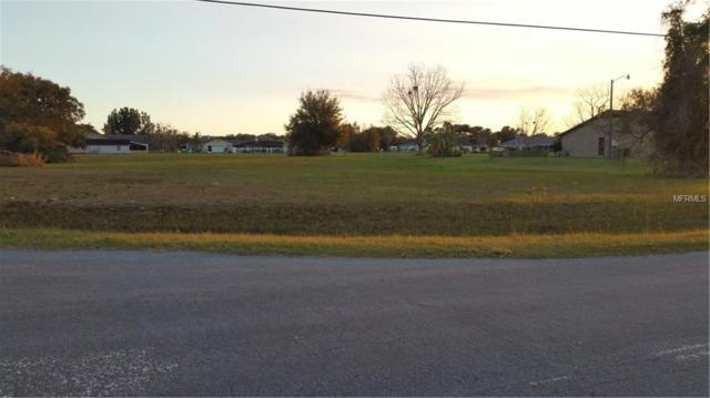 2694 Borinquen Drive, Kissimmee, FL 34744 (MLS #O5762877) :: Premium Properties Real Estate Services