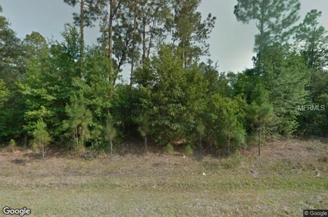 236 Spoonbill Drive, Poinciana, FL 34759 (MLS #O5762905) :: Griffin Group