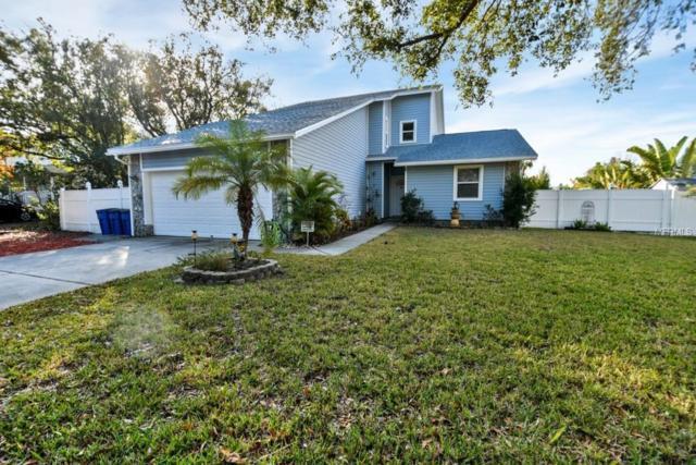 428 Klosterman Road W, Palm Harbor, FL 34683 (MLS #O5762938) :: Delgado Home Team at Keller Williams