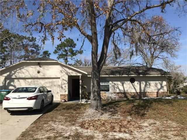 3128 Holiday Street, Deltona, FL 32738 (MLS #O5763387) :: Premium Properties Real Estate Services