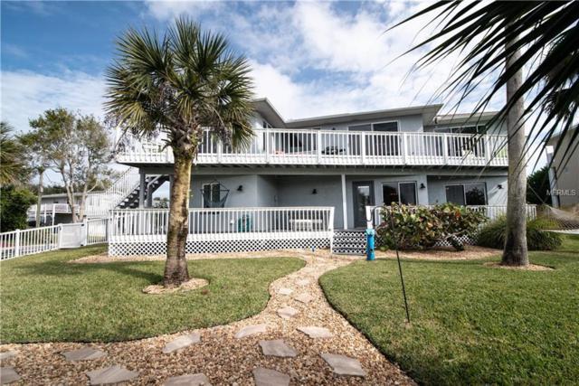 800 Garfish Avenue, New Smyrna Beach, FL 32169 (MLS #O5763623) :: The Light Team