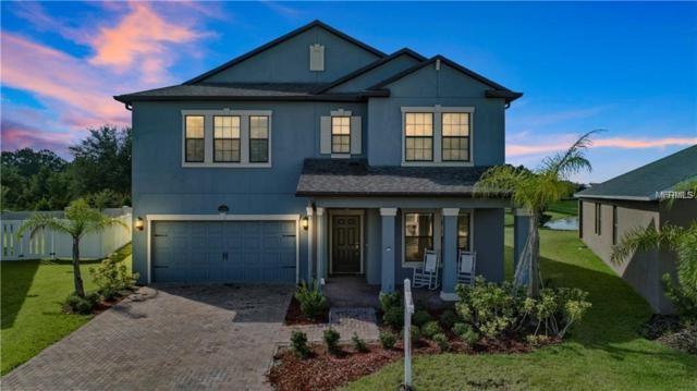 12289 Great Commission Way, Orlando, FL 32832 (MLS #O5763639) :: Godwin Realty Group