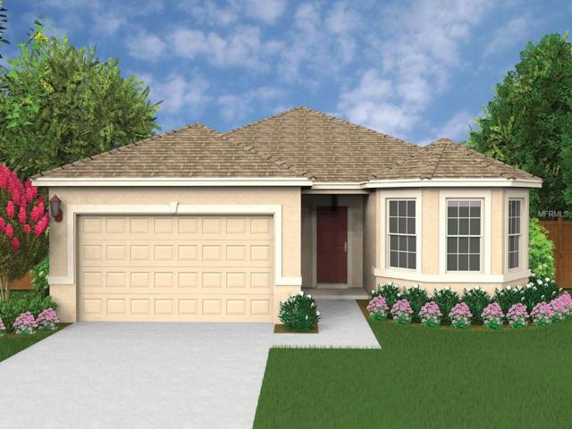 429 Montego Bay Drive, Mulberry, FL 33860 (MLS #O5763707) :: Welcome Home Florida Team