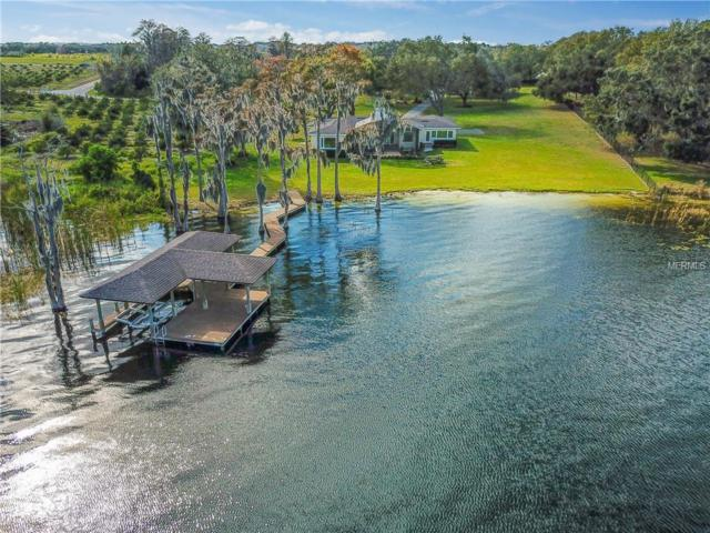 5005 W Lake Butler Road, Windermere, FL 34786 (MLS #O5763740) :: Bustamante Real Estate