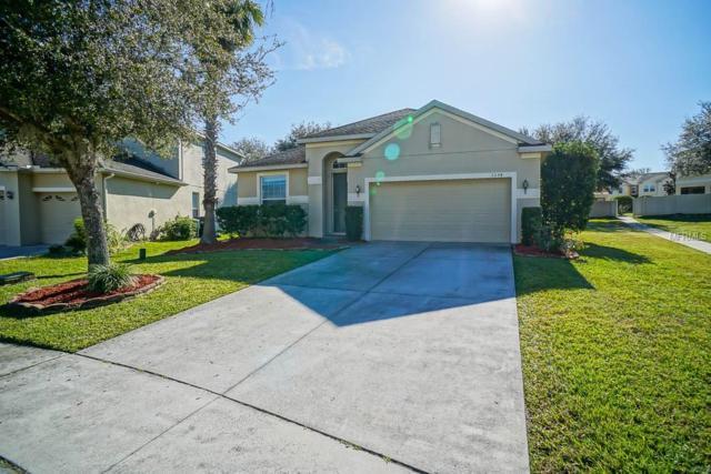 1334 Plumgrass Circle, Ocoee, FL 34761 (MLS #O5763903) :: The Light Team