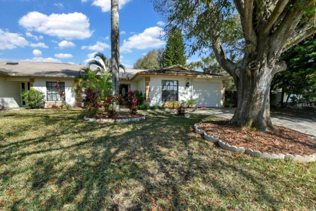 2000 Saginaw Court, Oldsmar, FL 34677 (MLS #O5763959) :: Lovitch Realty Group, LLC