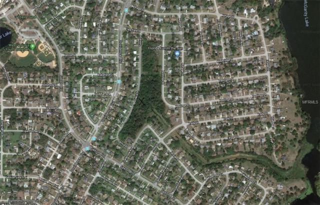 Zinnia Drive, Deltona, FL 32725 (MLS #O5763973) :: Premium Properties Real Estate Services