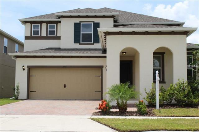 3490 Canvas Street, Kissimmee, FL 34741 (MLS #O5764068) :: NewHomePrograms.com LLC
