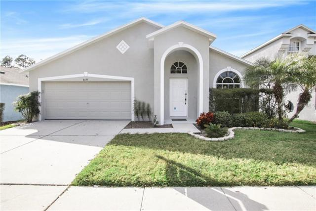 6425 Buckhead Court, Wesley Chapel, FL 33545 (MLS #O5764302) :: Cartwright Realty
