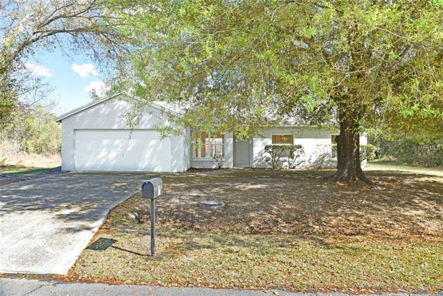 1011 Coatbridge Drive, Kissimmee, FL 34758 (MLS #O5764337) :: Homepride Realty Services