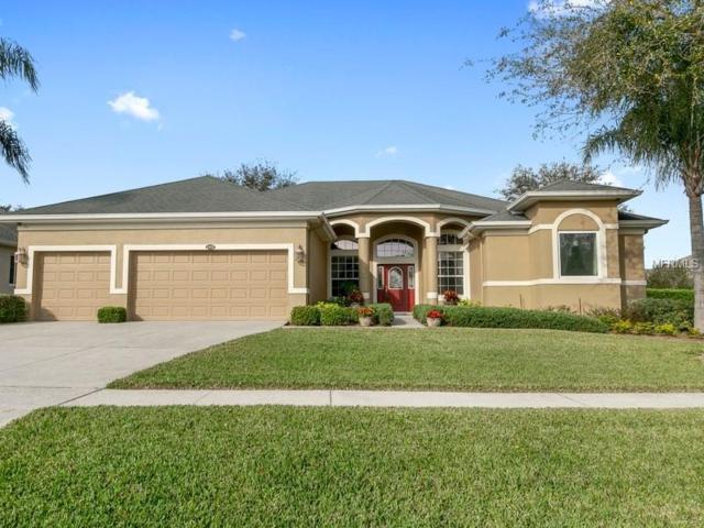1415 Lakemist Lane, Clermont, FL 34711 (MLS #O5764430) :: RealTeam Realty
