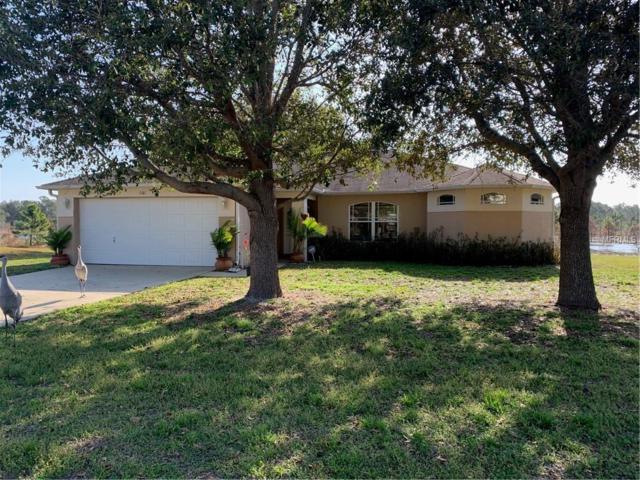 2681 Newmark Drive, Deltona, FL 32738 (MLS #O5764572) :: Premium Properties Real Estate Services