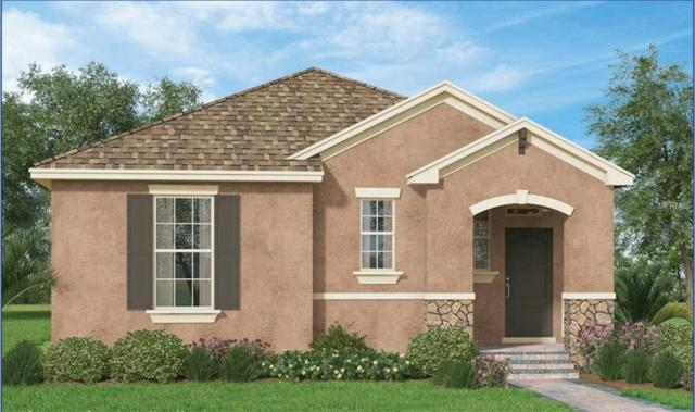 Address Not Published, Winter Garden, FL 34787 (MLS #O5764629) :: Zarghami Group