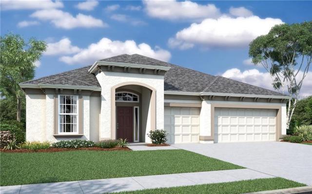 27255 Hawks Nest Circle, Wesley Chapel, FL 33544 (MLS #O5764685) :: The Duncan Duo Team