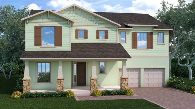 13597 Gorgona Isle Drive, Windermere, FL 34786 (MLS #O5764858) :: Bustamante Real Estate