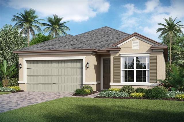2180 Antilles Club Drive, Kissimmee, FL 34747 (MLS #O5764928) :: RE/MAX Realtec Group