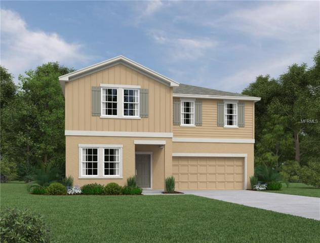 17616 Serenoa Boulevard, Clermont, FL 34714 (MLS #O5765119) :: Griffin Group