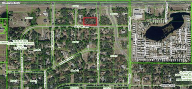 Maple Leaf Drive, Hudson, FL 34667 (MLS #O5765208) :: McConnell and Associates