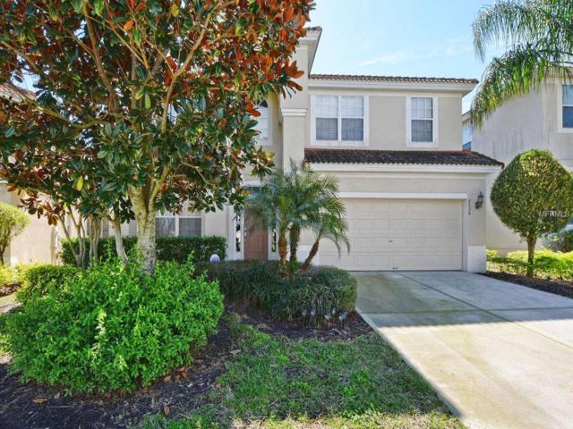 2536 Archfeld Boulevard, Kissimmee, FL 34747 (MLS #O5765291) :: Bridge Realty Group