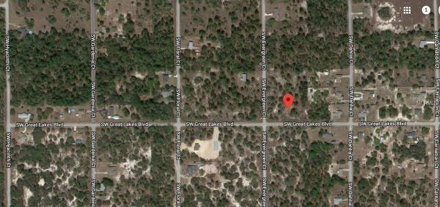 Undetermined, Dunnellon, FL 34431 (MLS #O5765671) :: Griffin Group