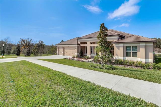 216 Camelot Loop, Clermont, FL 34711 (MLS #O5765719) :: Dalton Wade Real Estate Group