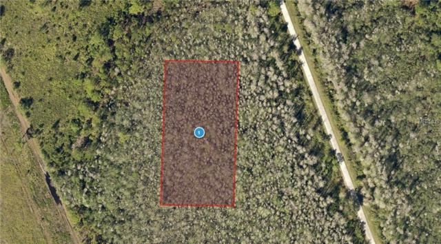 Salyers Road, Clermont, FL 34714 (MLS #O5765789) :: The Price Group