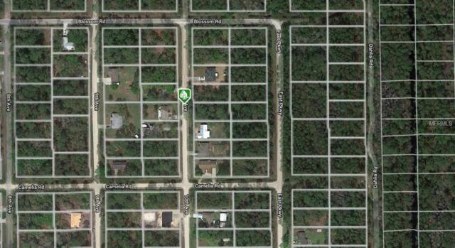10TH Avenue, Deland, FL 32724 (MLS #O5765825) :: Team 54