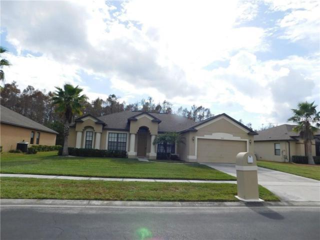 19131 Timber Pine Lane, Orlando, FL 32833 (MLS #O5765983) :: The Light Team