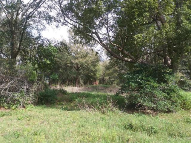 457 N Wekiwa Springs Road, Apopka, FL 32712 (MLS #O5766281) :: Armel Real Estate