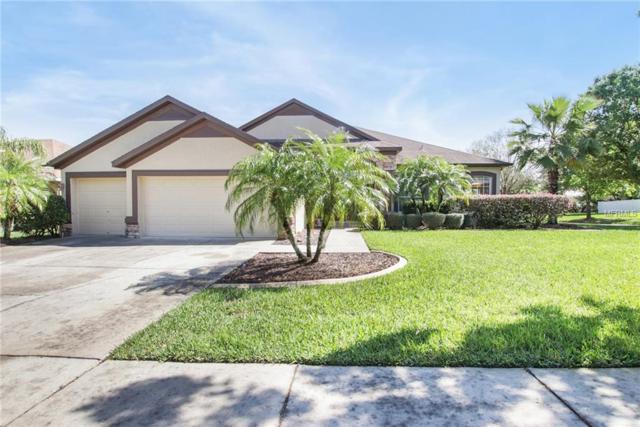 2608 Durant Trails Boulevard, Dover, FL 33527 (MLS #O5766946) :: Jeff Borham & Associates at Keller Williams Realty
