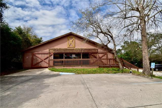 1666 Providence Boulevard, Deltona, FL 32725 (MLS #O5767150) :: Premium Properties Real Estate Services