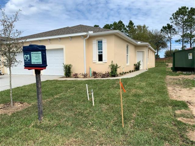 26951 White Plains Way, Leesburg, FL 34748 (MLS #O5767452) :: Cartwright Realty