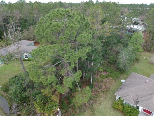 30 Renworth Lane, Palm Coast, FL 32164 (MLS #O5767613) :: The Duncan Duo Team