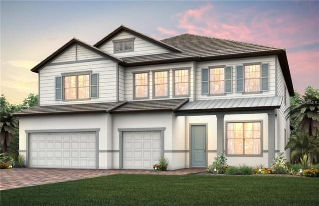 7905 Wandering Way, Orlando, FL 32836 (MLS #O5767685) :: Premium Properties Real Estate Services