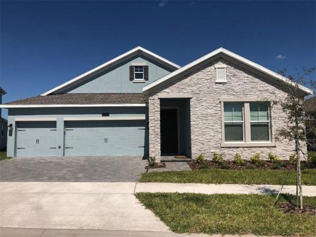 2938 Wordsmith Road, Kissimmee, FL 34746 (MLS #O5768081) :: Cartwright Realty