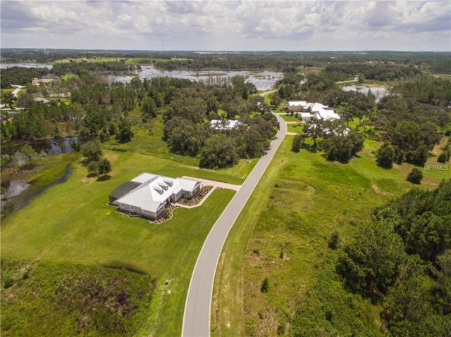 430 Long And Winding Road, Groveland, FL 34737 (MLS #O5768704) :: Cartwright Realty