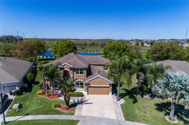 9742 Osprey Landing Drive, Orlando, FL 32832 (MLS #O5768718) :: Armel Real Estate