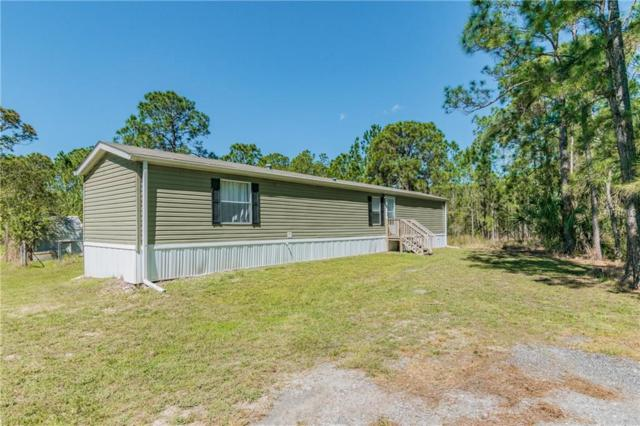 980 Leather Fern Lane, Mims, FL 32754 (MLS #O5768994) :: The Duncan Duo Team